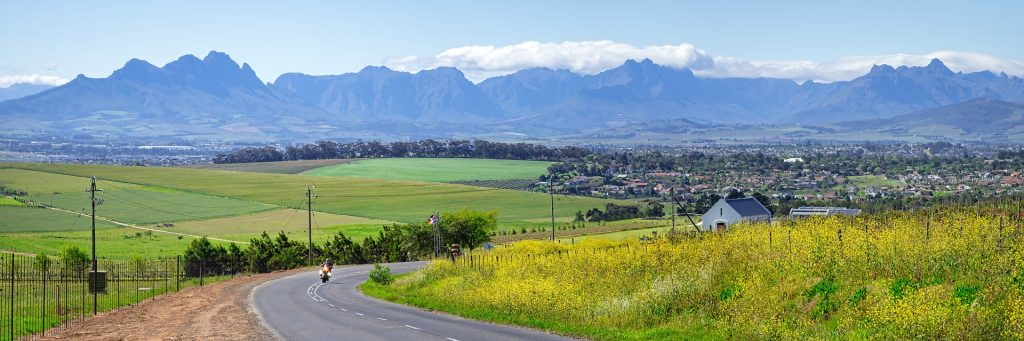 Durbanville wine valley is perfect for a Cape Town wine tour
