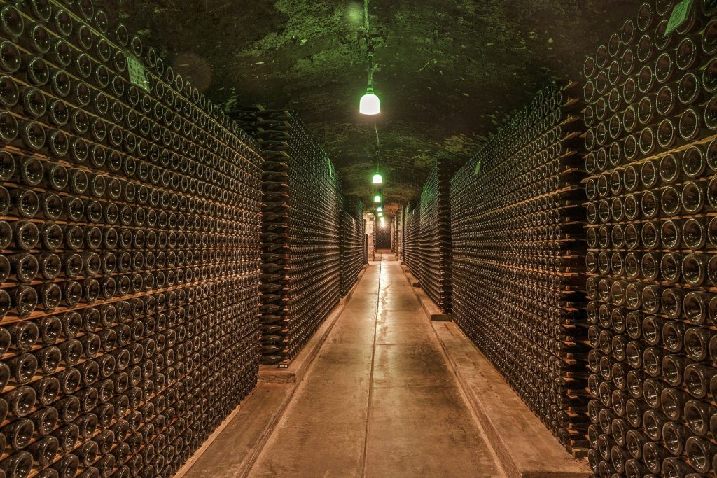 Learn about wineries and how wine is produced on your Cape Town wine tour