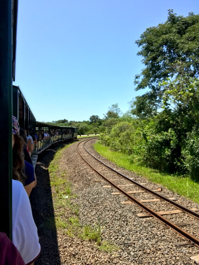The train that takes you around Iguazu Falls Argentina side